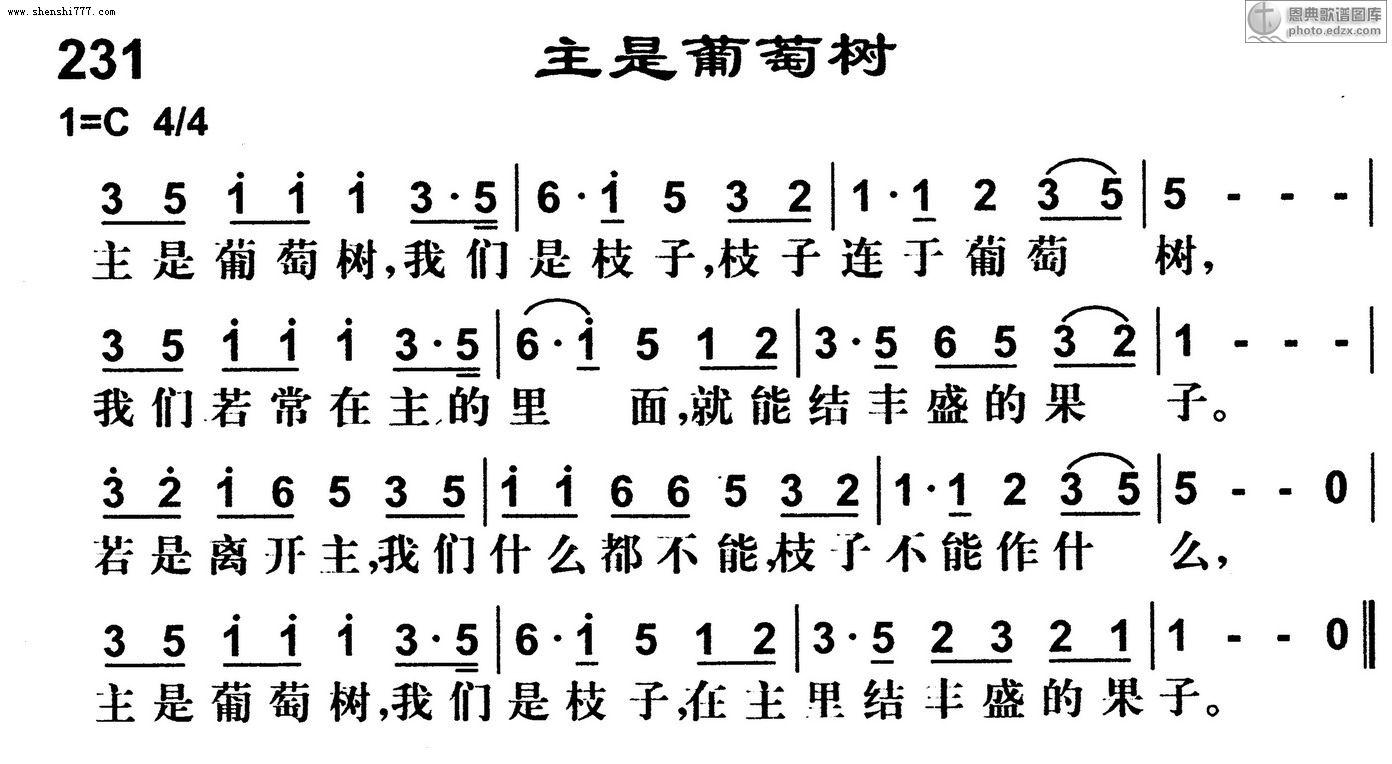 231首主是葡萄树 基督教歌谱赞美诗歌谱 -231首主是葡萄树